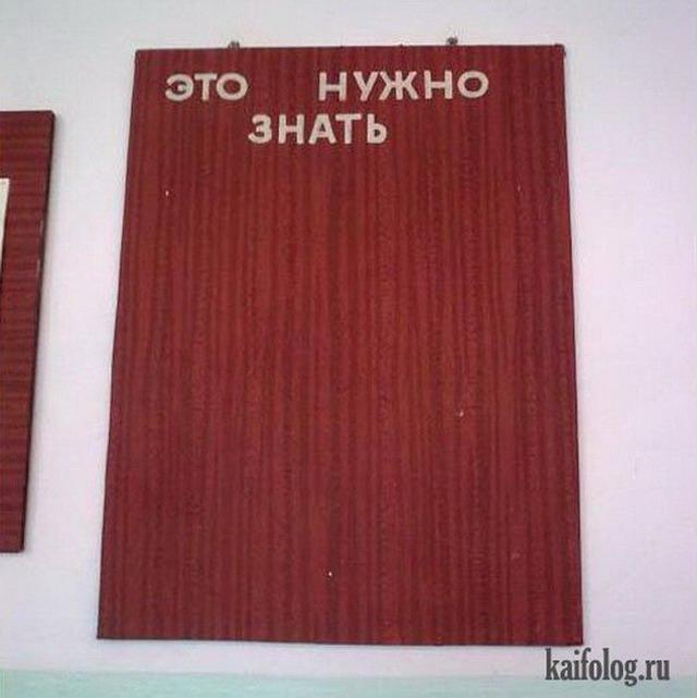 Школьные плакаты и стенгазеты (45 фото)