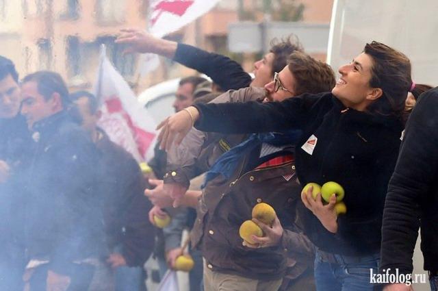Забастовки (50 фото)