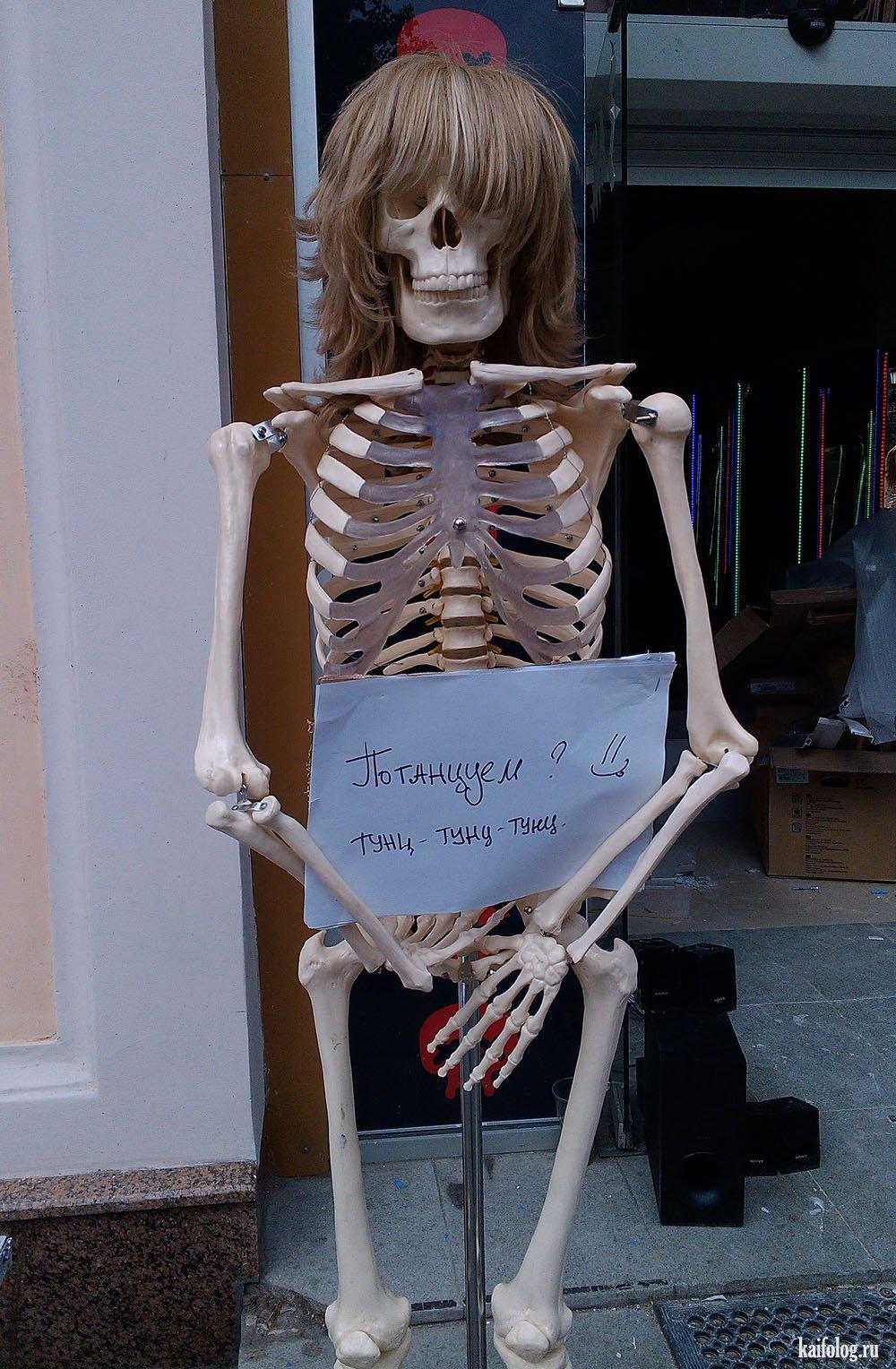 смешные картинки с скелетами опыт наших сотрудников