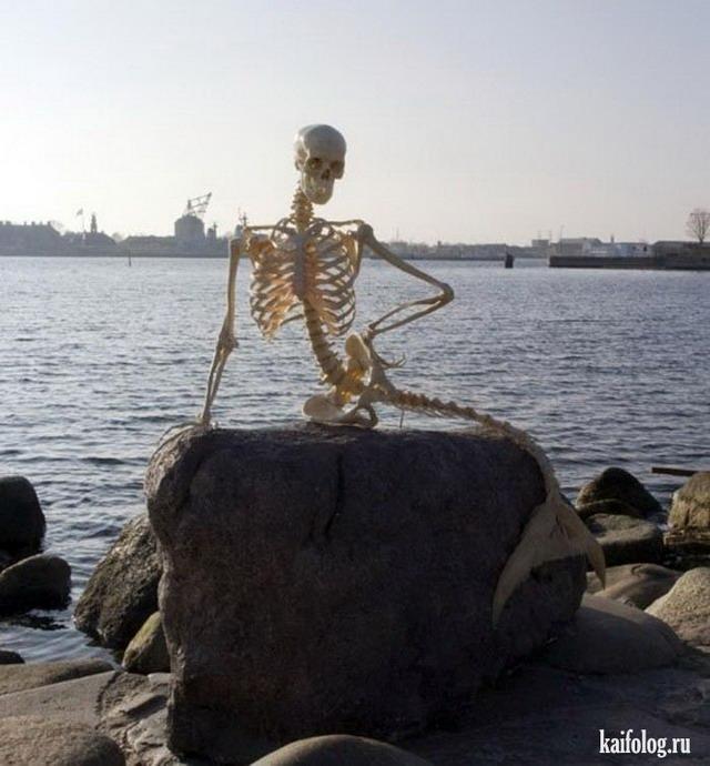 скелеты на отдыхе картинки блог для эскортниц