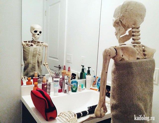 Скелеты (50 фото)