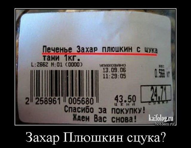 Прикольные демотиваторы про Россию - 232 (45 демок)
