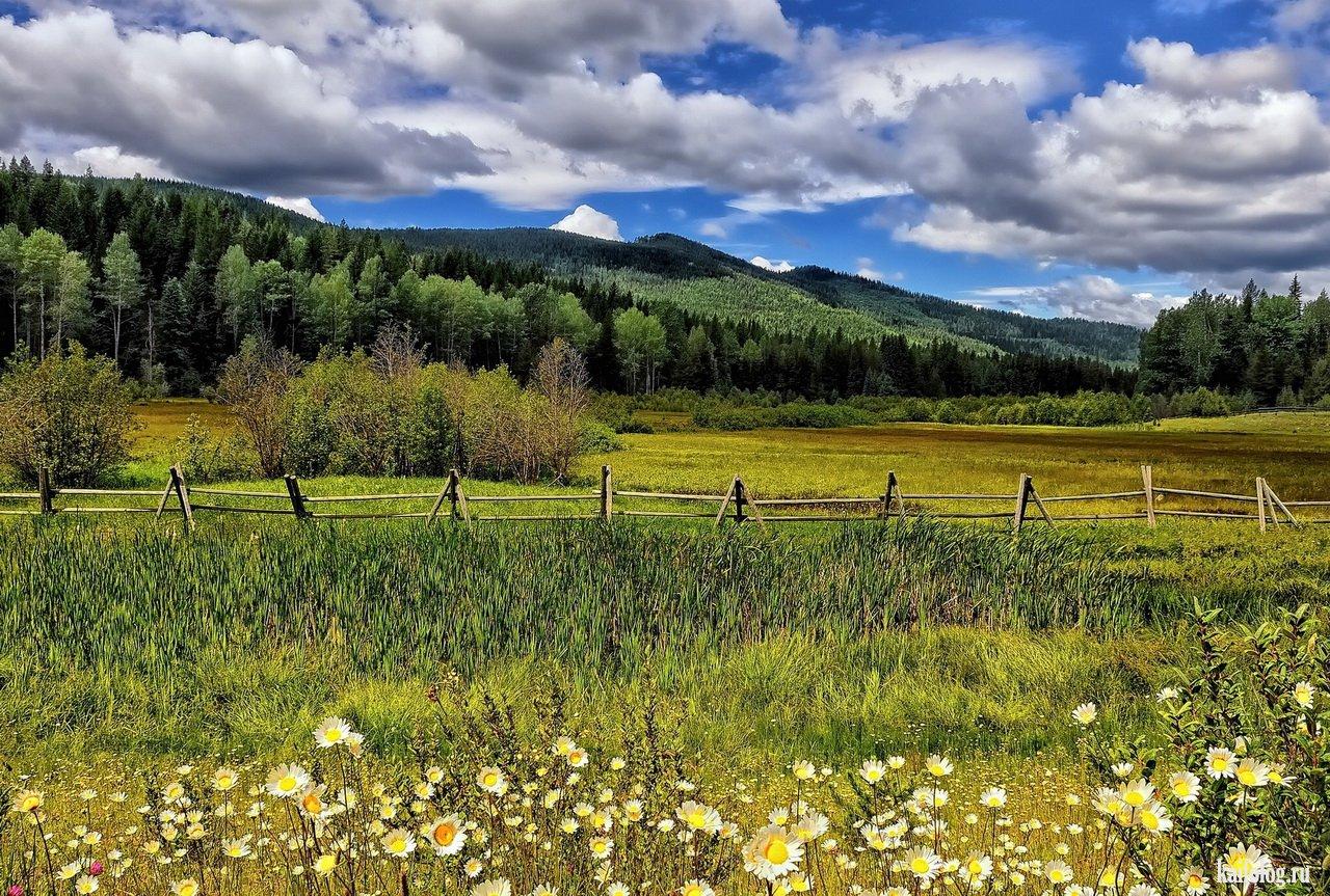 фото красивые пейзажи луга и поля несколько храмов старинных