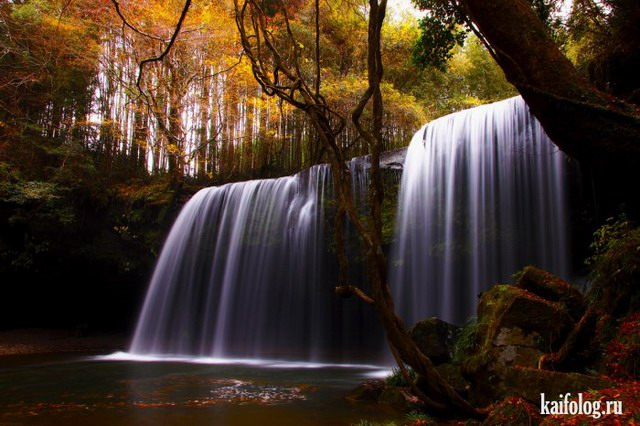Красивый мир (55 фото)