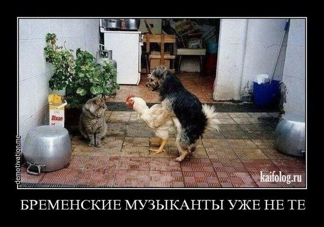http://kaifolog.ru/uploads/posts/2015-06/1433225560_019.jpg