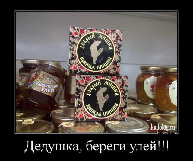 Русские демотиваторы с приколами - 241 (50 штук)