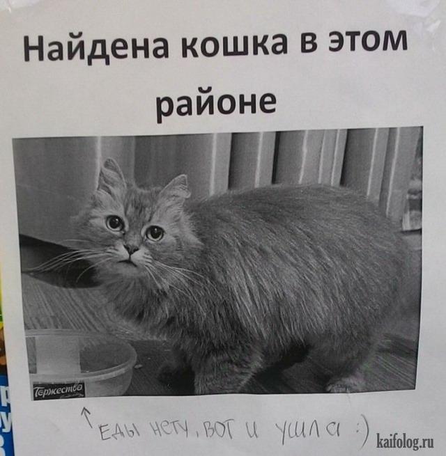 Русские фотоприколы - 294 (75 фото)