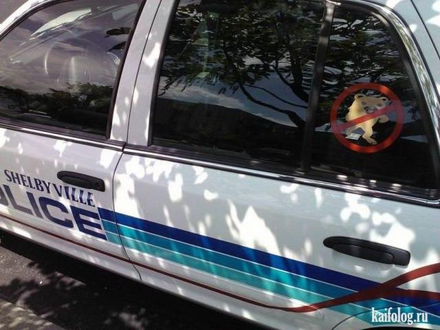 Моя полиция (50 приколов)