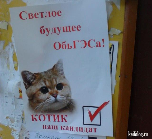 Предвыборные плакаты (35 фото)