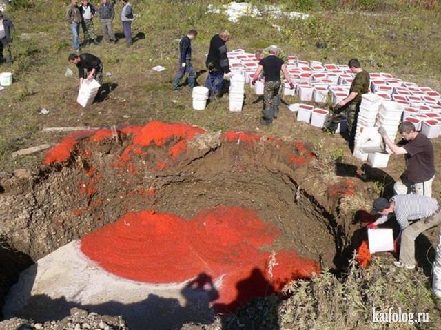Уничтожение икры по-русски (10 фото)
