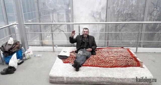 Приколы про ковры (45 фото)