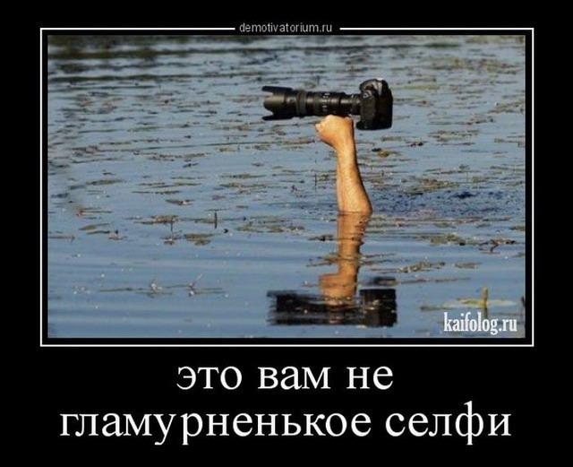 Демотиваторы недели - 281 (40 фото)