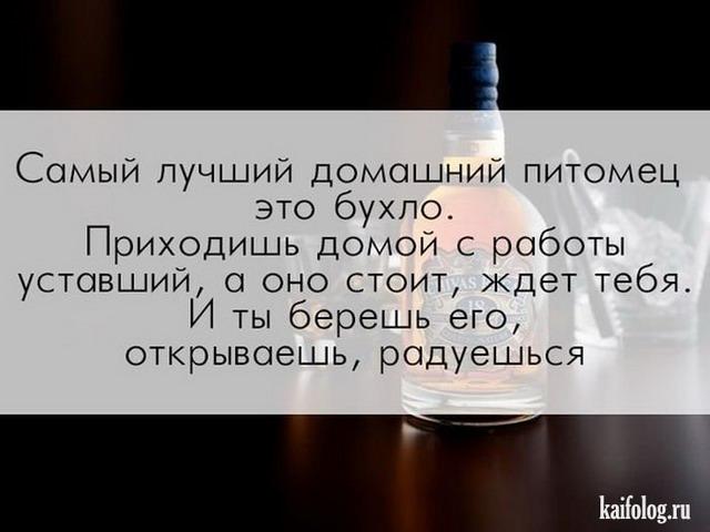 прикольные стихи про алкоголь нагревается мере