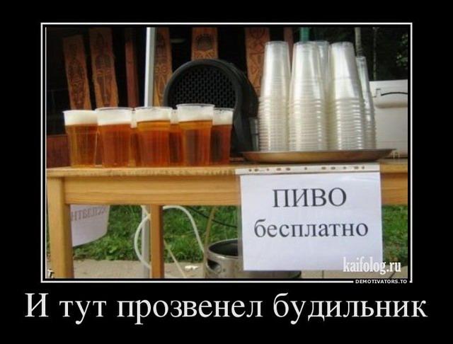 Демотиваторы про пиво (60 штук)
