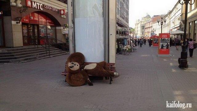 Прикольные лавочки и скамейки (45 фото)