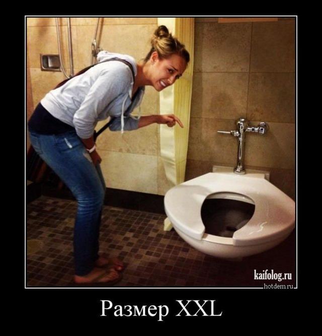 Демотиваторы про туалет (50 демотиваторов)