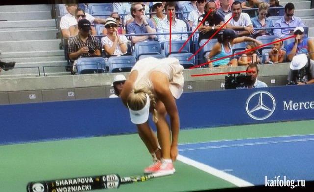 Теннис Смотри Спорт