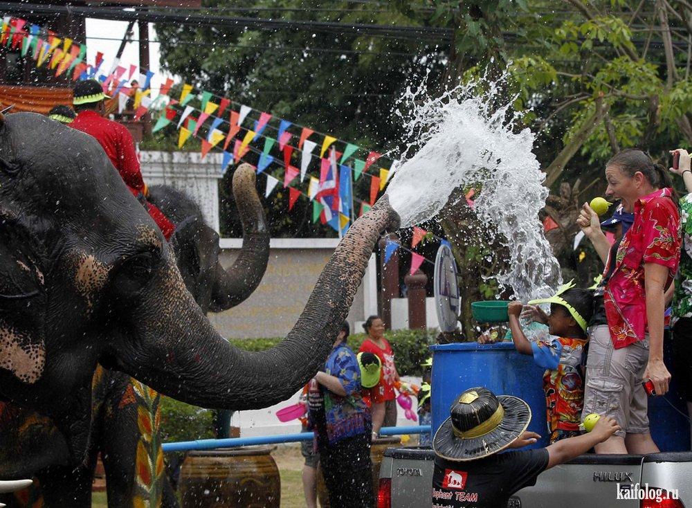 Таиланд фото прикольные