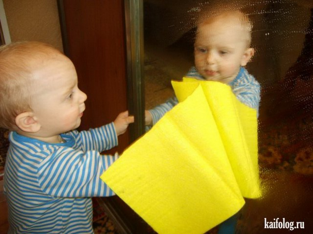 Маленькие помощники (50 фото)