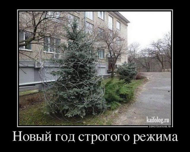 Новогодние демотиваторы (50 картинок)