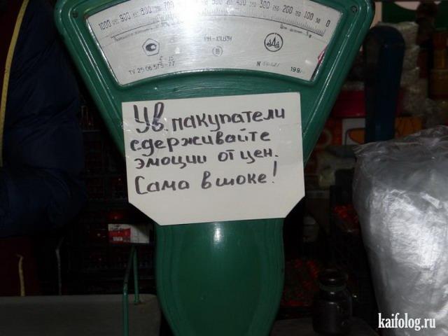 Маразмы по-русски - 315 (85 фото)