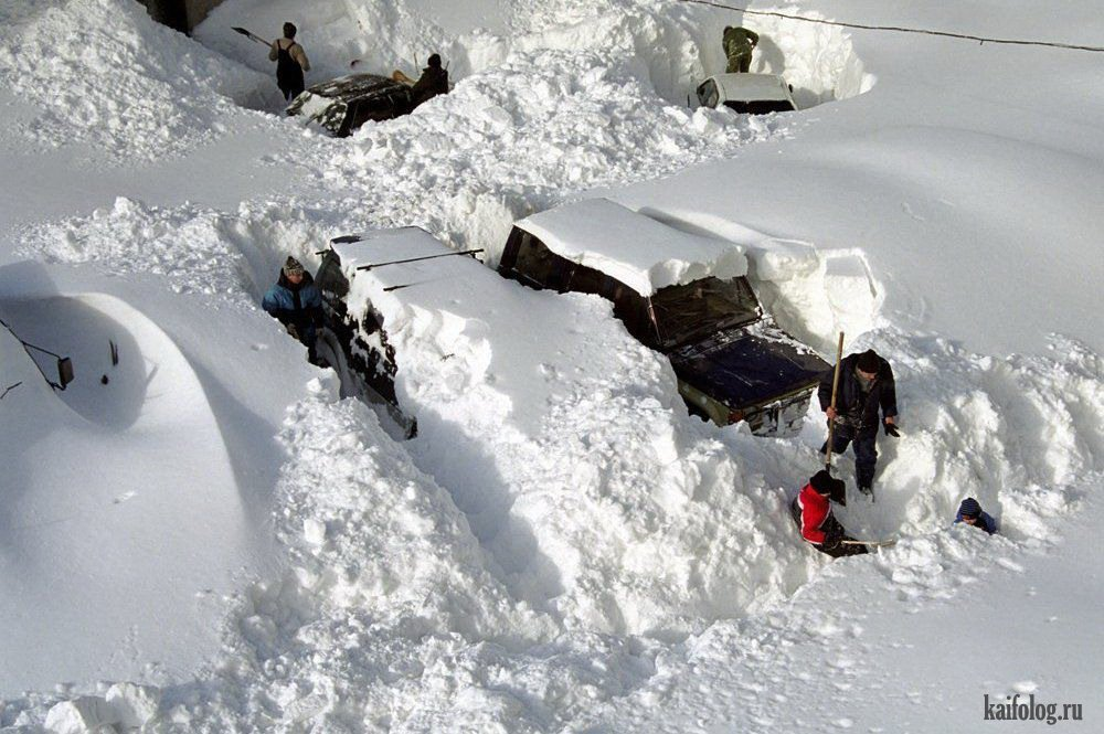 весь в снегу прикольные картинки соотечественник, бывший