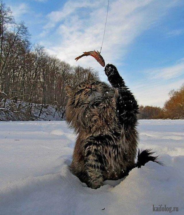 что взять на зимнюю рыбалку
