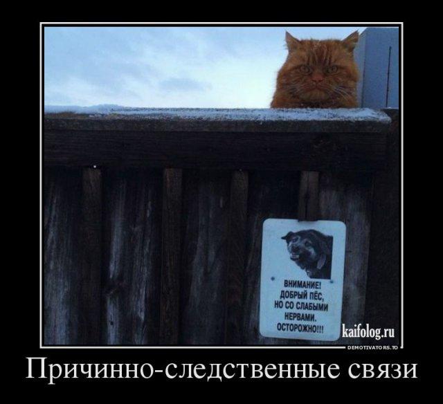 Прикольные демки по-русски - 269 (50 демотиваторов)