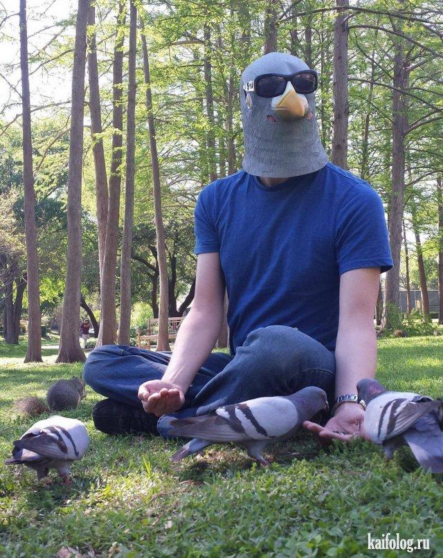 Прикольная мимикрия и маскировка (45 фото)