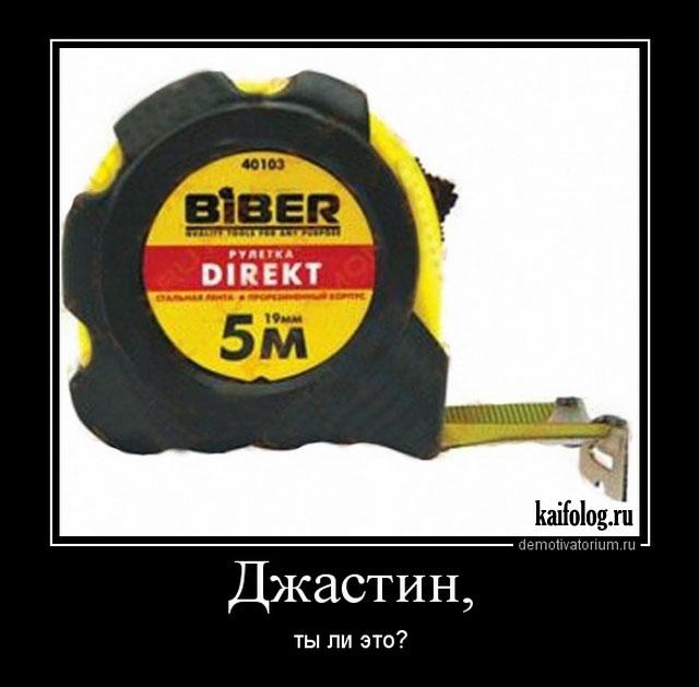 Демотиваторы - 306 (45 прикольных фото)