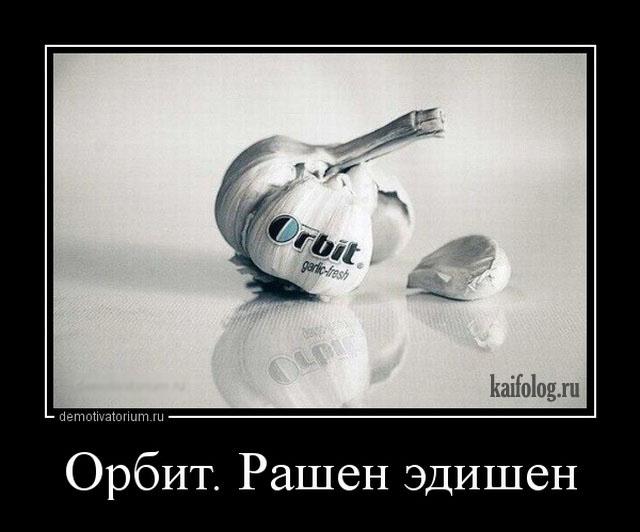 Русская демотивация - 276 (55 демок)
