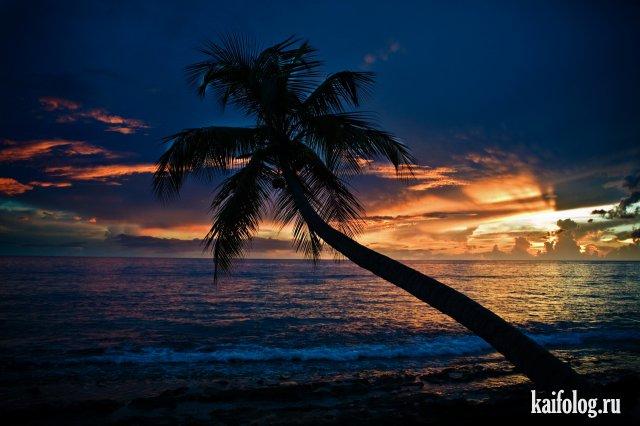Красивые картинки и фотографии (55 фото)