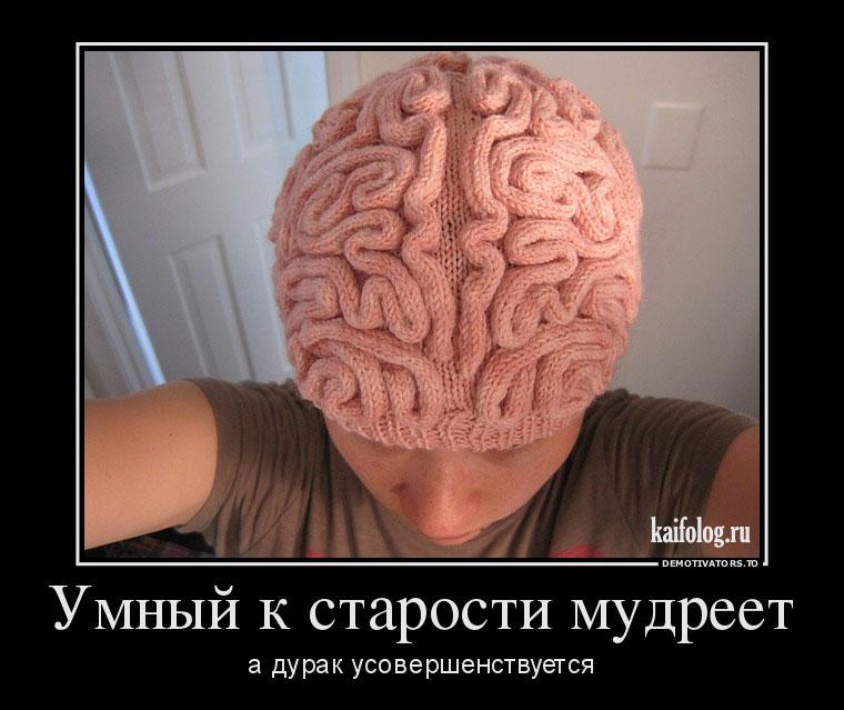 Про дураков картинки