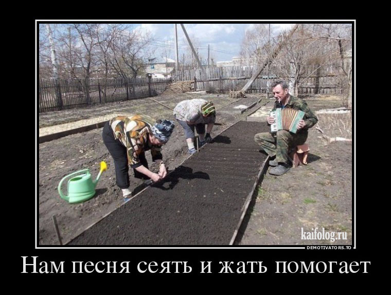 демотивация по русски-лучшие демотиваторы