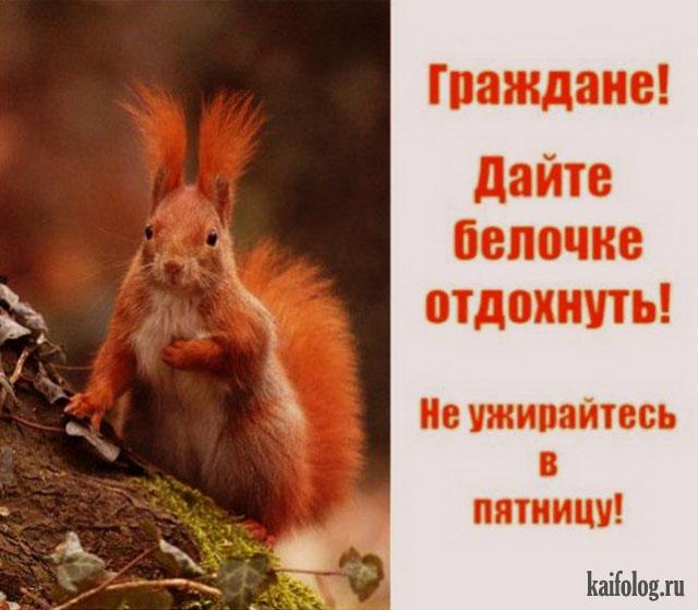 http://kaifolog.ru/uploads/posts/2016-05/1463717557_028_3.jpg