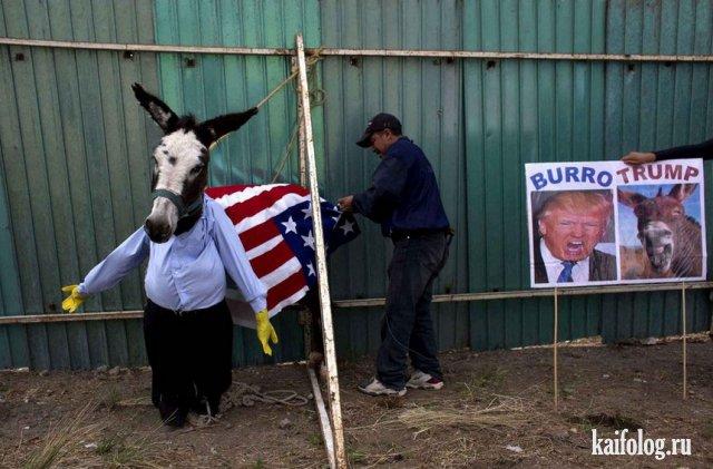 Смешные картинки и фотографии (9 - 15 мая 2016)