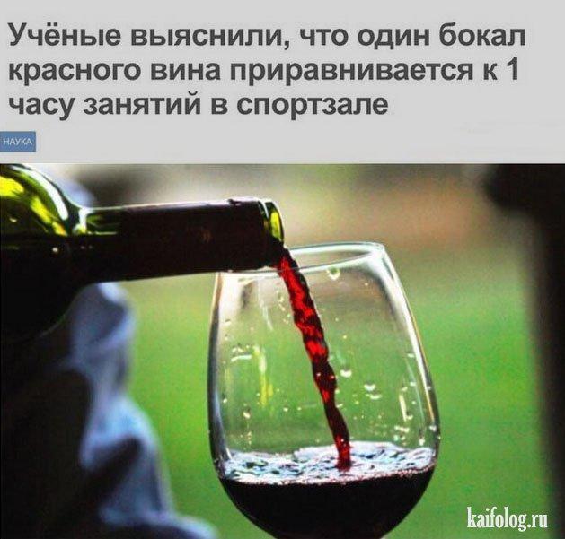 приколы про алкоголь фото