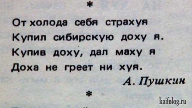 День рождения Пушкина (50 фото)