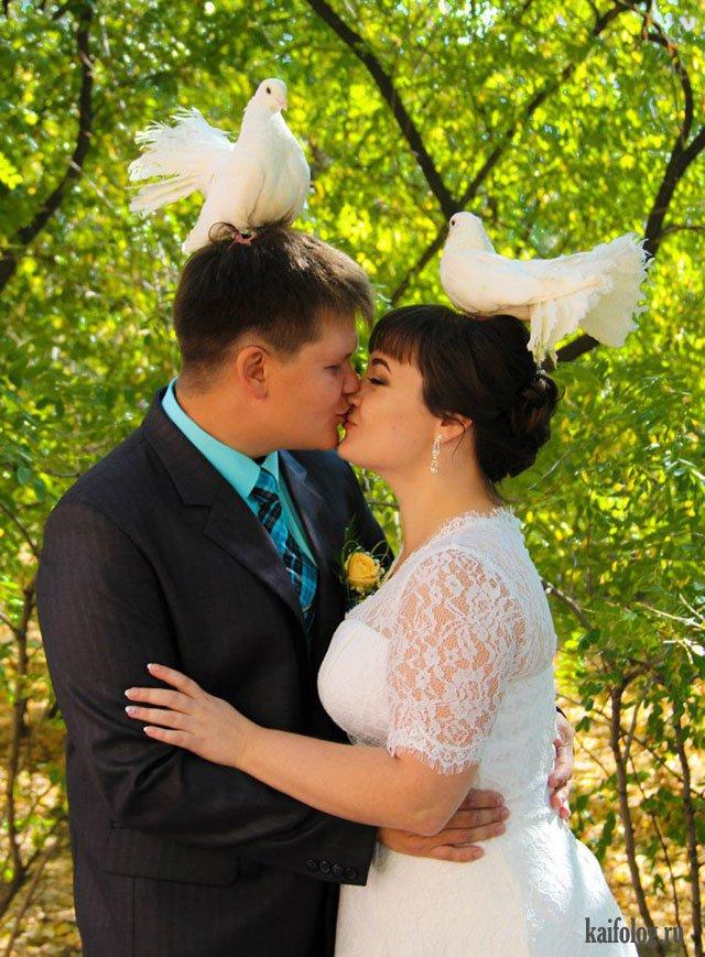 Свадебные фотоприколы (40 штук)