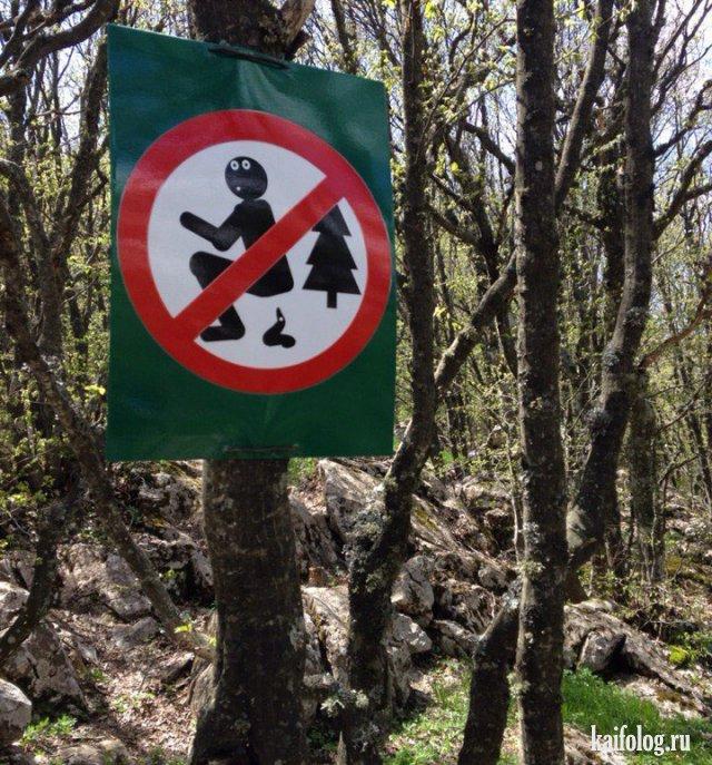 Прикольные запреты из России (45 фото)