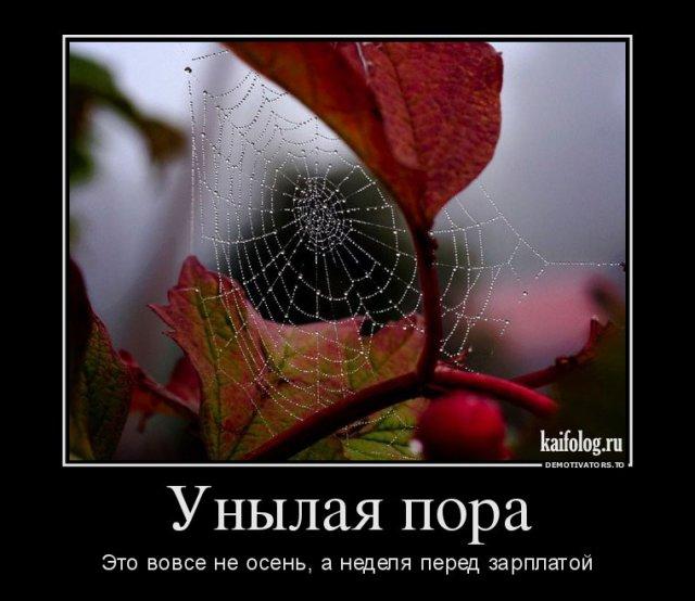 Демотиваторы про осень