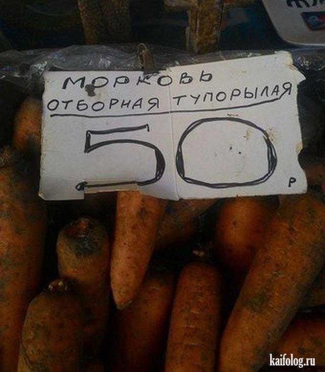 Смешные русские фото (60 приколов)