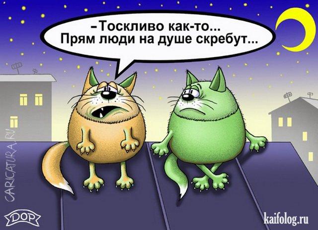 Прикольные картинки (50 карикатур)