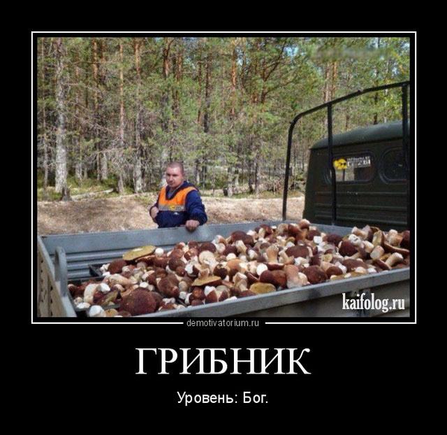 Демотивация по-русски (50 демотиваторов)