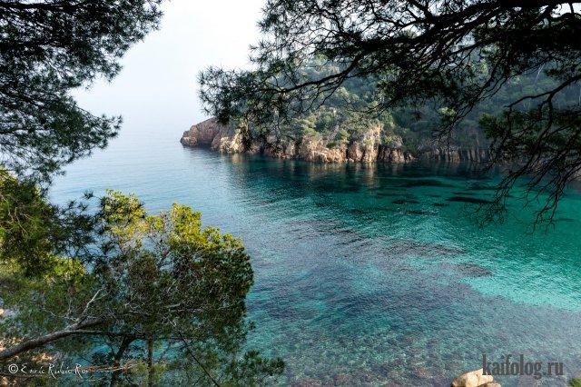 Красивые фотографии природы (60 фото)
