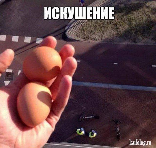 Приколы про яйца (45 фото)