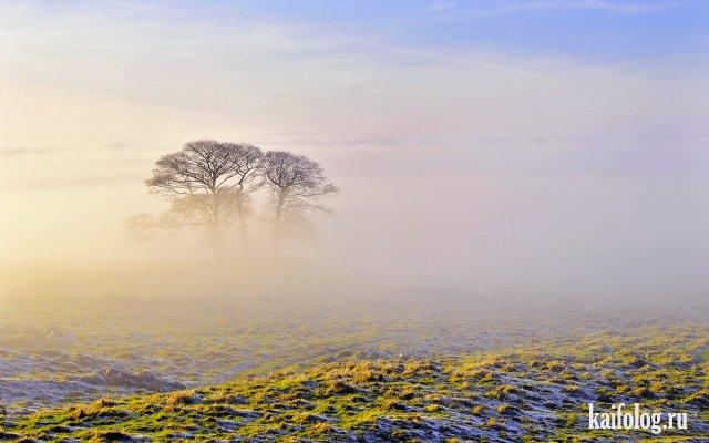 Красота природы планеты Земля (55 фото)