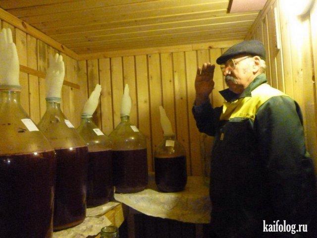 Русские маразмы недели (60 фото)