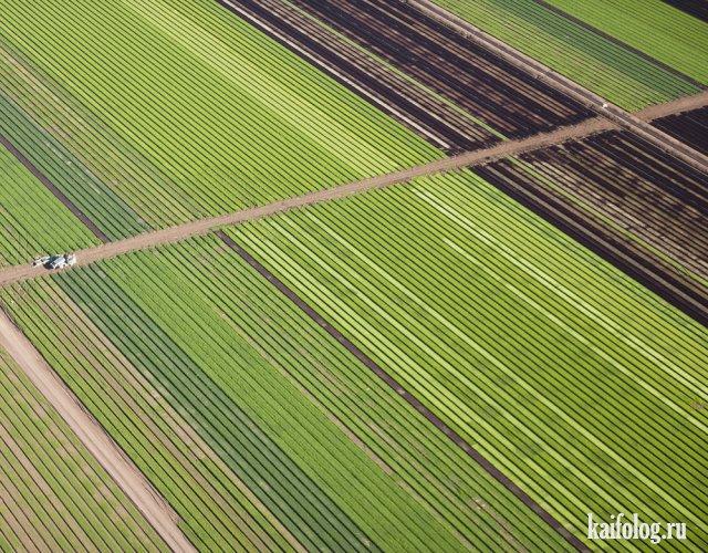 Мир с высоты птичьего полета (50 фото)