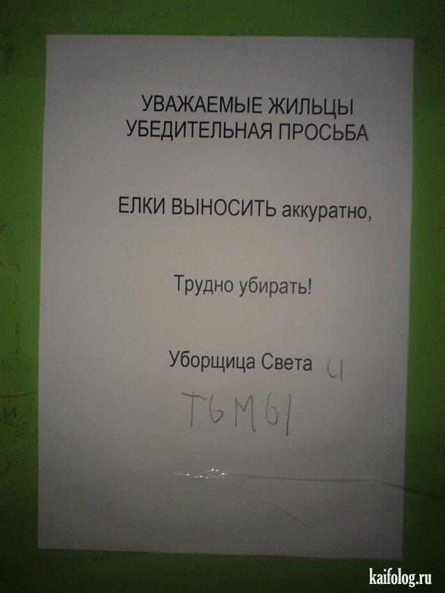 Объявления в подъездах (40 фото)